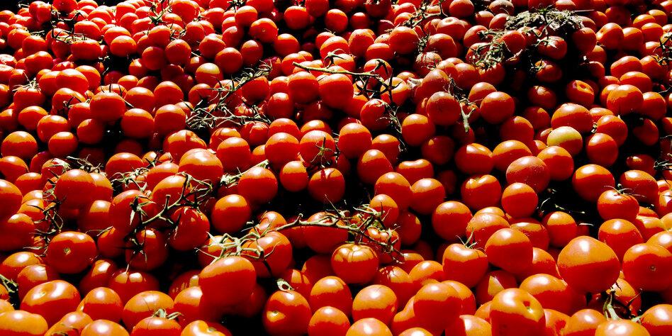 kolumne pflanzen essen tomatensaft gegen augenringe. Black Bedroom Furniture Sets. Home Design Ideas