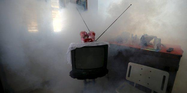 kubas reservisten bek mpfen zika m cke feldzug gegen die m cken. Black Bedroom Furniture Sets. Home Design Ideas