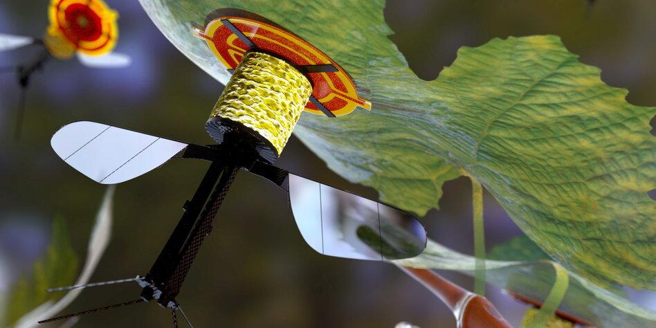 Minidrohnen k nnen an bl ttern haften roboterbiene macht for Was macht man gegen kleine fliegen in der blumenerde