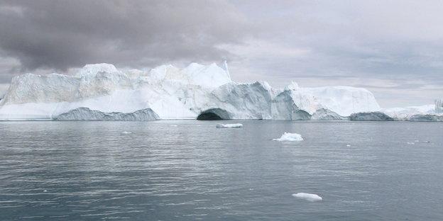 klimawandel und krankheitserreger katzenparasiten in der arktis. Black Bedroom Furniture Sets. Home Design Ideas