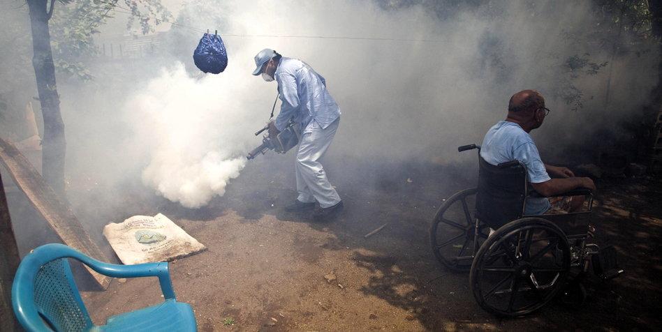 dengue fieber ohne fieber
