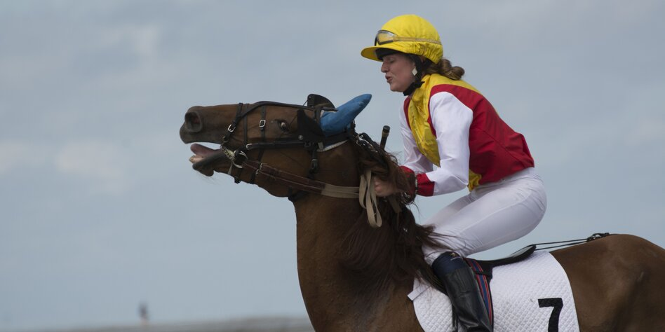Zungenband Pferd