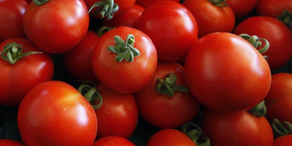 saubere energie in island tomaten statt ponys. Black Bedroom Furniture Sets. Home Design Ideas