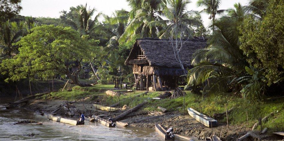 Aus Papua Neuguinea