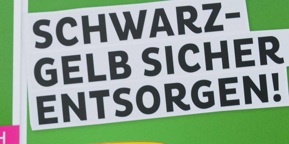 Grüne nach Niedersachsen-Wahl: Erfolg im Atomlager- und Mastland ...