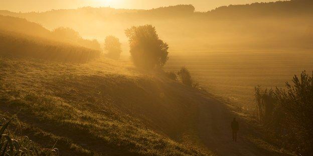 Arm Im Alter Die Sonne Scheint Für Alle Kostenlos Tazde