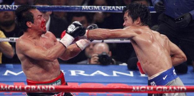 sportwetten boxen