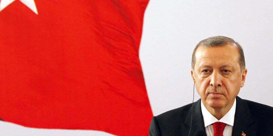 Türken Wählen Afd
