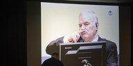 UN-Tribunal in Den Haag zu Srebrenica: Mladic stört die Urteilsverkündung