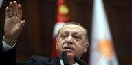 Kurden im türkisch-syrischen Grenzgebiet: Streit um US-gestützte Einsatztruppe