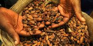Kakaokonferenz in Berlin: Schokogenuss ohne Sünde