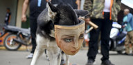 Nicaragua in politischer Krise: Ortega zeigt mangelnden Willen