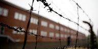 """Schwedische Fernsehsendung: """"Faktencheck"""" zum Holocaust"""