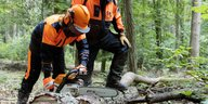 Kettensägenkurs im Pfälzer Wald: Auch Schärfen der Zähne wird geübt