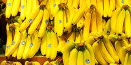 """Gewerkschafter zu Bananen aus Ecuador: """"Lidl antwortet uns nicht mal"""""""