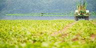 Kurssturz nach US-Urteil: Glyphosat wird zum Gift für Bayer