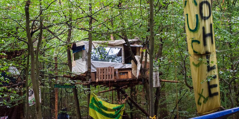 Polizei rückt in besetzten Hambacher Forst vor
