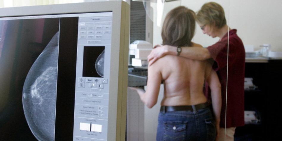 Programm zu Brustkrebs und Umweltrisikofaktoren