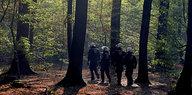 Von Fledermäusen und Hainbuchen: Wenn der Hambacher Wald spricht