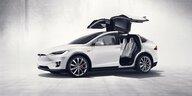 Kolumne Nullen und Einsen: Tesla gegen das menschliche Maß