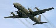 Abgestürzter Militärjet über Syrien: In der Schusslinie