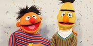 Ernie und Bert sind schwul: Die, die Liebe nicht sehen wollen