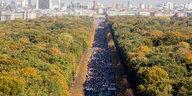 Deutschlands größte Demonstrationen : Was Menschen bewegt
