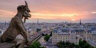 Gelbwesten-Protest in Frankreich: Vermachtete Strukturen