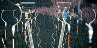 Klimawandel im Harz: Sport ohne Winter