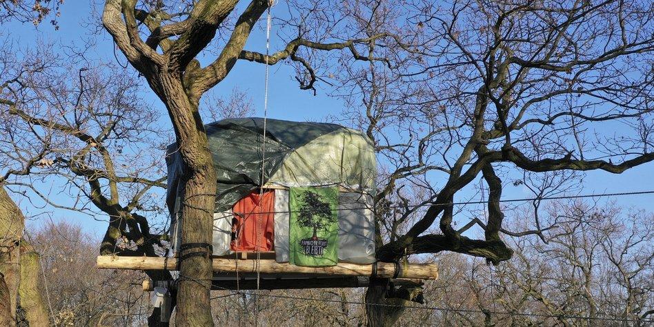 Dinge Des Jahres 2018 In Sieben Schritten Zum Baumhaus Taz De