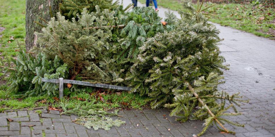 Bier Weihnachtsbaum.Kolumne German Angst Herzenswärme Und Bier Am Büdchen Taz De