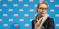 Dubiose Parteispenden an die AfD: Aus einem Namen werden 14