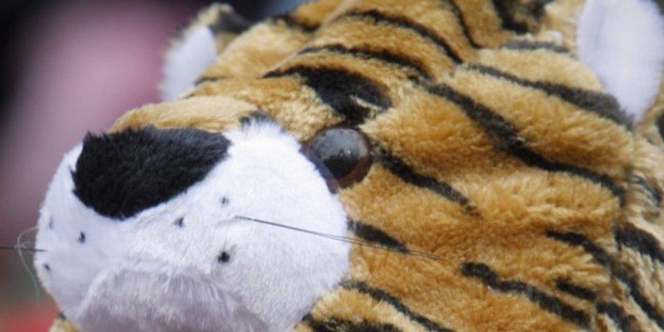 Chinesisches Neujahrsfest in Berlin: Auf gehts, Tiger! - taz.de