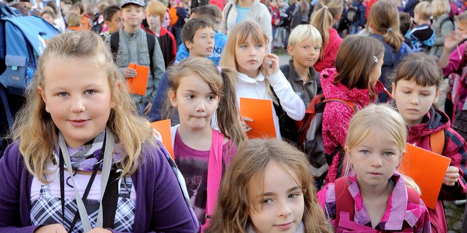 Kiefern, Kinder und Konflikte