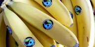 Bananen mit Fairtrade-Logo
