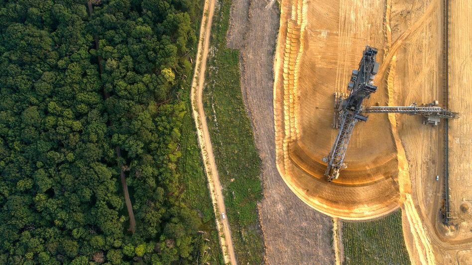 NRW hält Wald für sicher