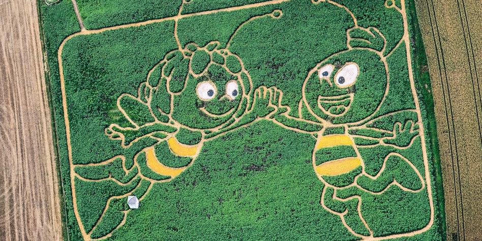 Bienen volksbegehren bayern