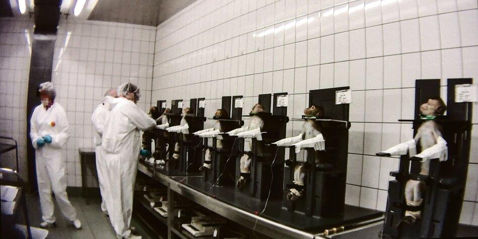 Lpt Labor Mienenbüttel