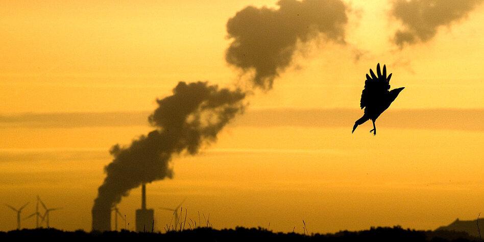 CO2-Handel ist kompliziert