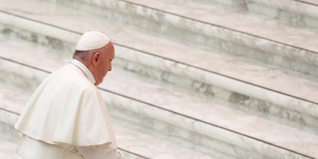 Papst Franziskus Taz De