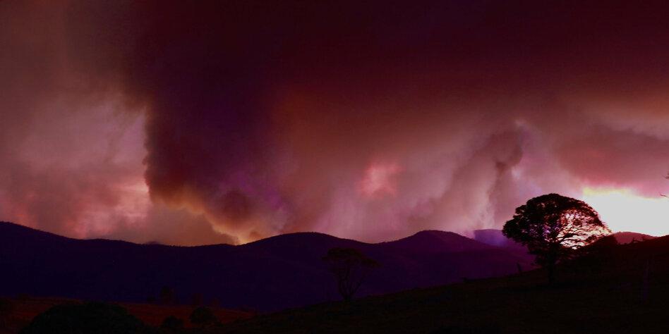 Feuerkatastrophe in Australien: Weltrekord beim Waldbrand