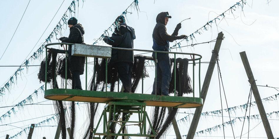 Umgang mit Geflüchteten in Coronakrise: Portugal macht's besser