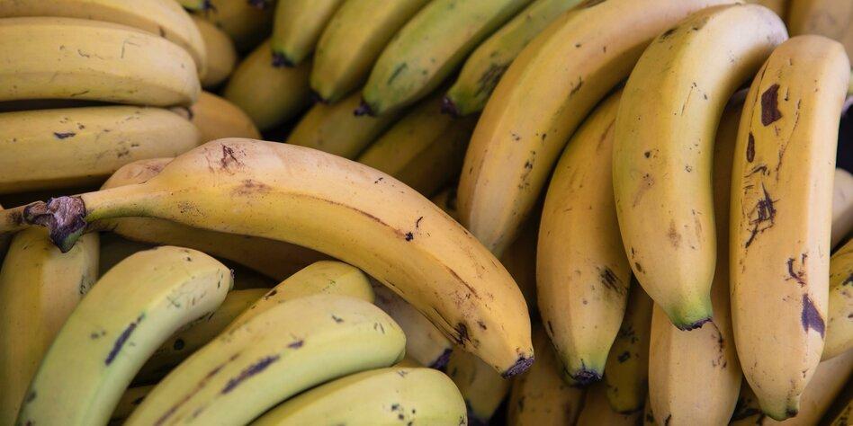Ekelobst Banane: Breitbreiig, fadentreu, unverschält
