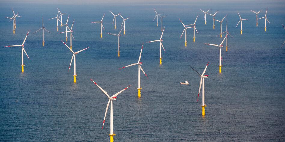 Offshore-Windpark vor Gericht