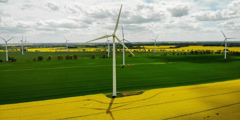 Neubau von Anlagen nimmt zu: Mehr Windräder – und doch zu wenig