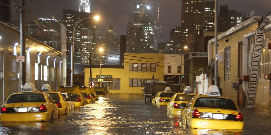 Taz Cafe New York Ny