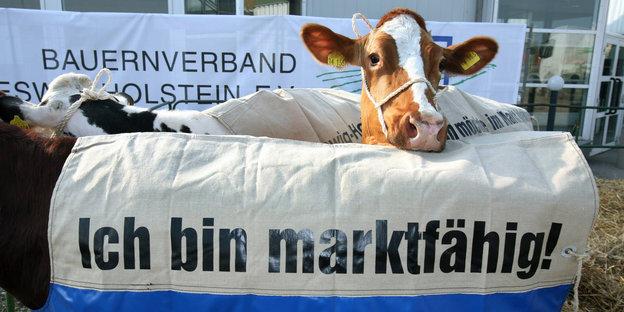 Kommentar Milchmarkt: Ohne Quote gibt es Tote
