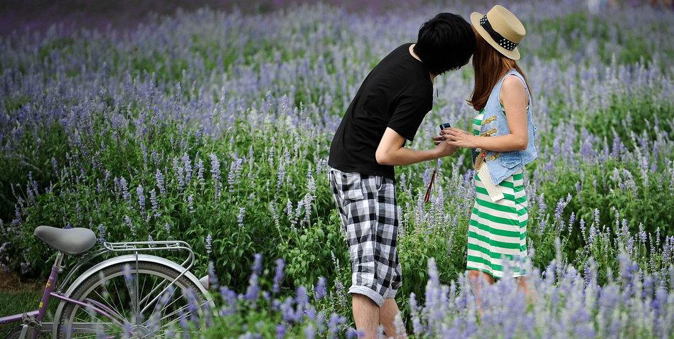 """Chemikalienexperte über Lavendel: """"Die Aufregung Ist"""