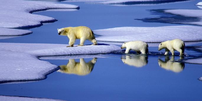 http://www.taz.de/uploads/hp_taz_img/xl/Klimawandel_01.jpg