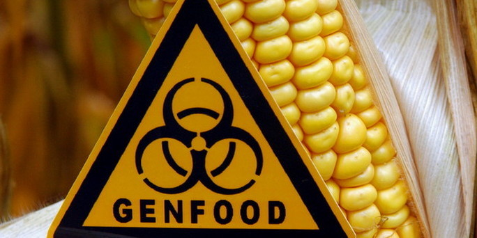 Aγωγές της Monsanto σε Αγρότες γιατί επανασπέρνουν σπόρους !